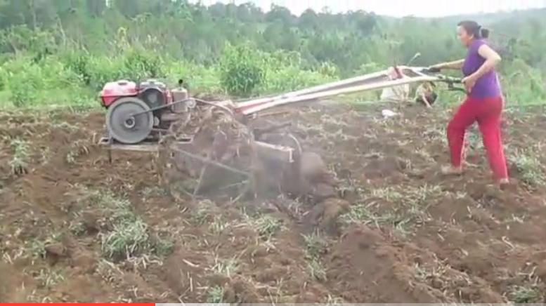 农村小媳妇开拖拉机干农活,男人看完都服了!