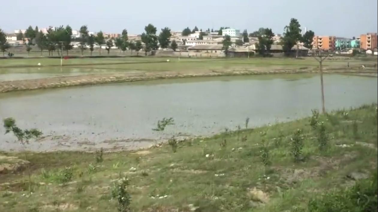 实拍 平壤看腻了 看看朝鲜农村是啥样
